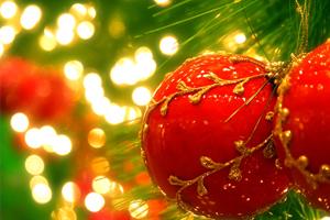Akova vous souhaite de joyeuses fêtes !