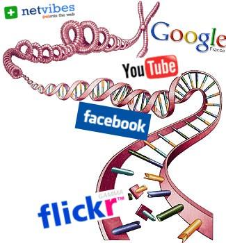 Le génôme des startups web de la Silicon Valley enfin décodé ?