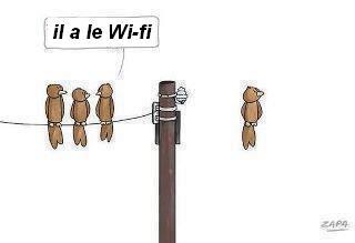 Le futur sera sans fil