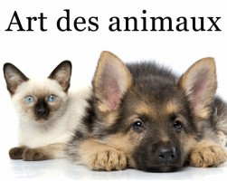 Boutique Art des animaux